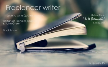 Freelancer Writer